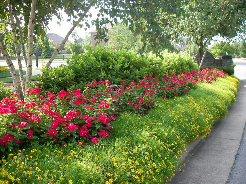 a beautiful display of landscaping