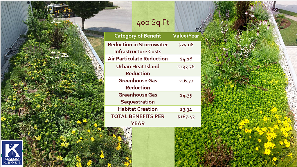Why Rooftops Should Go Green
