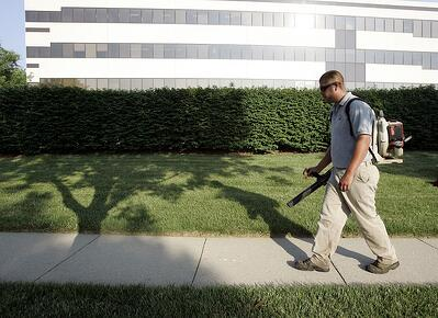 landscape employee using leaf blower