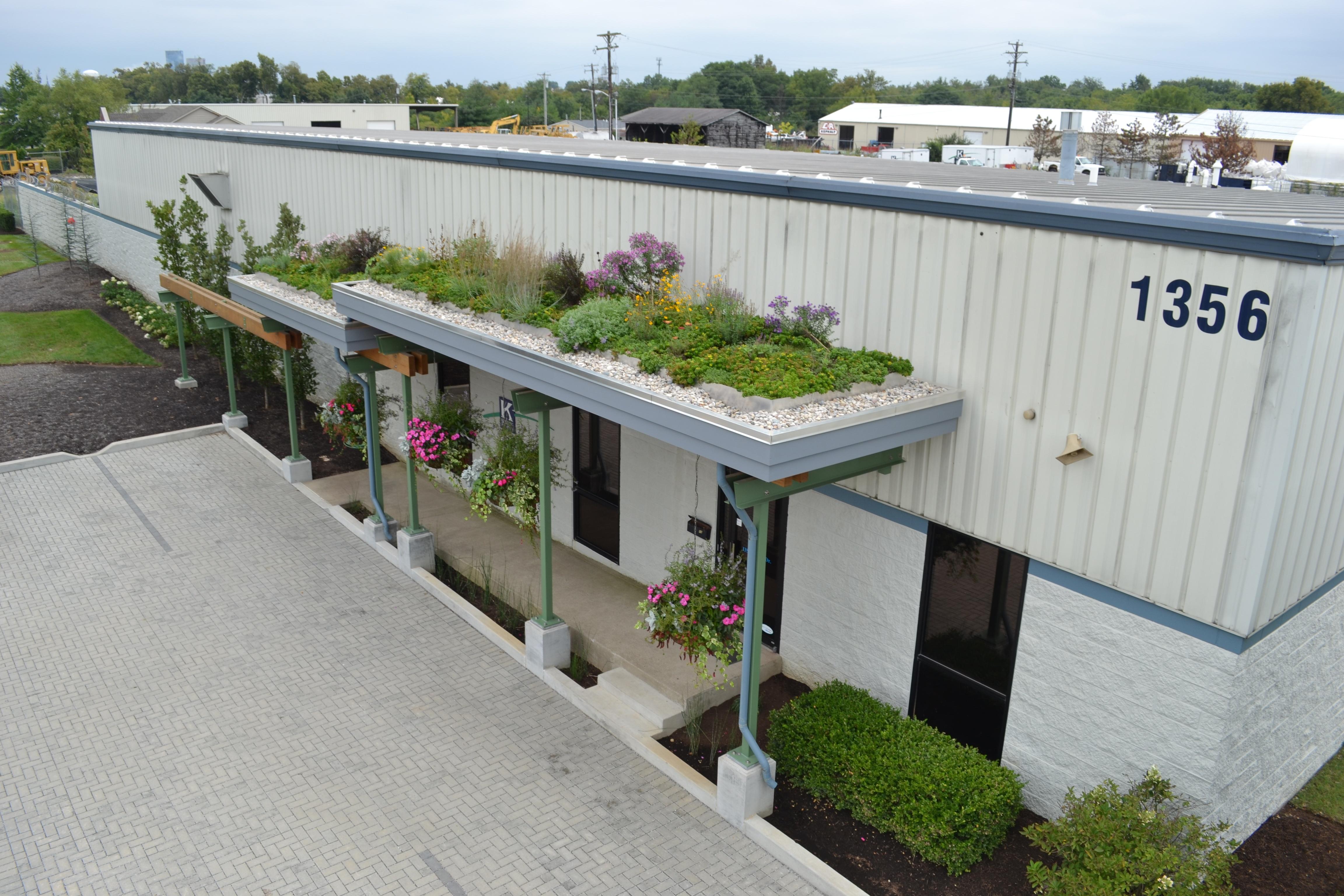 Green Roof in Lexington