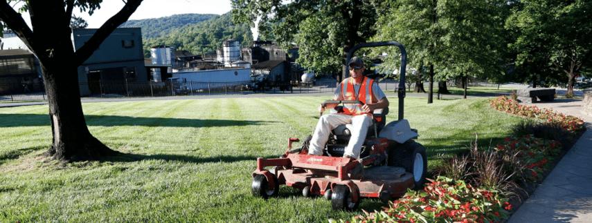 Alternate your mowing pattern each week.